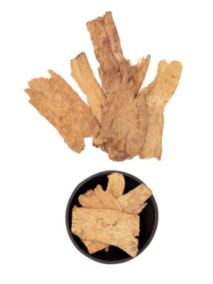 Astragalus root used in traditional chinese herbal medicine with mandarin title script translation. Huang qi.